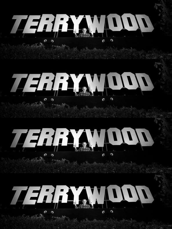 TERRYWOOD PRINT2